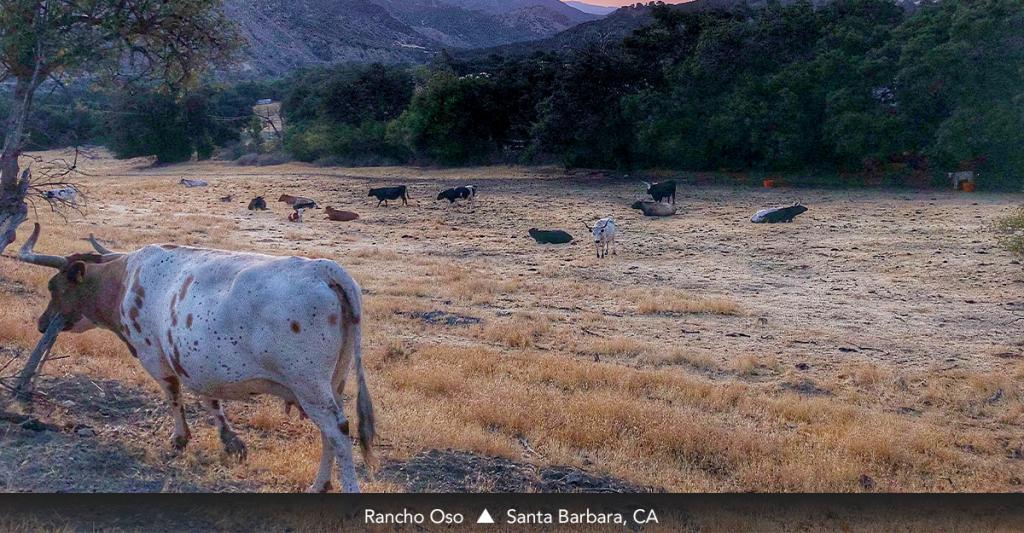 Rancho Oso •Santa Barbara, CA